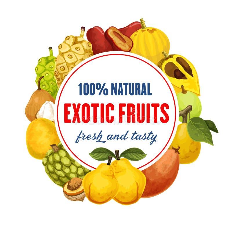 Egzotyczna owocowa ikona dla jedzenie sklepu spożywczego lub rynku ilustracja wektor