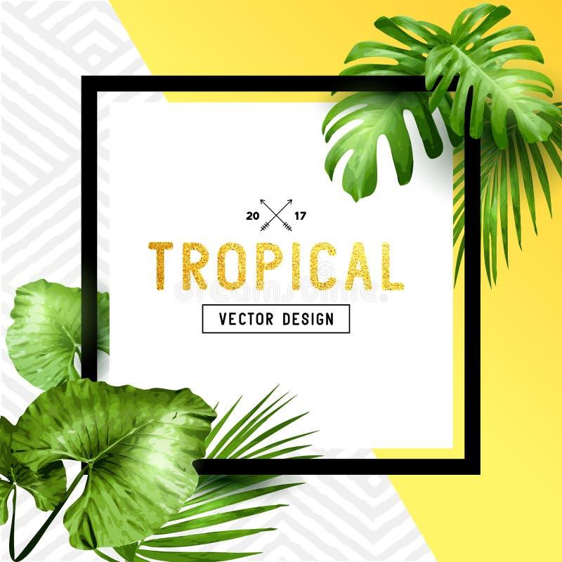 Egzotyczna tropikalna lato rama royalty ilustracja