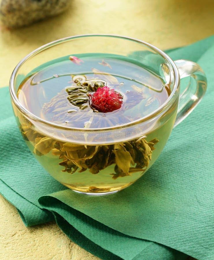 egzotyczna zielona herbata obraz stock