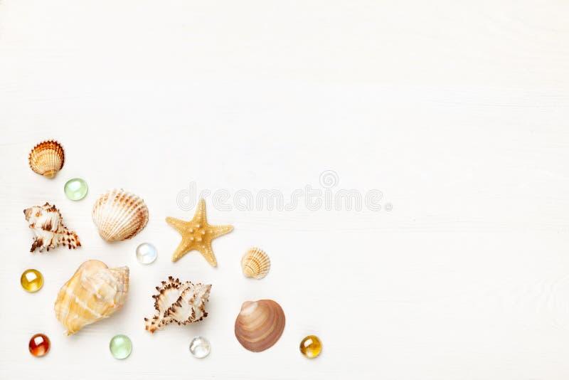 Egzotyczne morze skorupy i szklany beadson biały drewniany tło Pojęcie lato plaży i podróży wakacje Mieszkanie nieatutowy, kopii  obraz stock