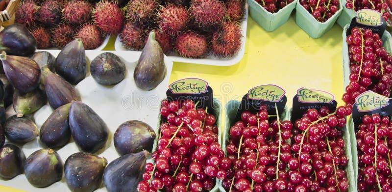 egzotyczne owoce Targowy kram z rozmaitością organicznie owoc Kolorowe owoc w rynku Jaskrawy lata tło Zdrowy obraz stock