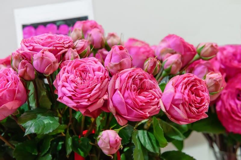 Egzotyczne róże różowe nowożytne elita rozmaitość w bukiecie jako prezent Tło zdjęcie stock