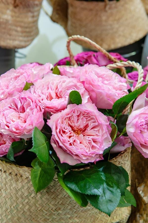 Egzotyczne róże różowe nowożytne elita rozmaitość w bukiecie jako prezent Tło Selekcyjna ostrość zdjęcie stock