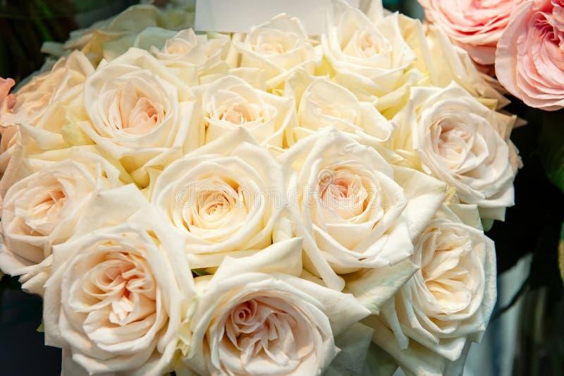Egzotyczne róże różowe nowożytne elita rozmaitość w bukiecie jako prezent Tło Selekcyjna ostrość fotografia stock
