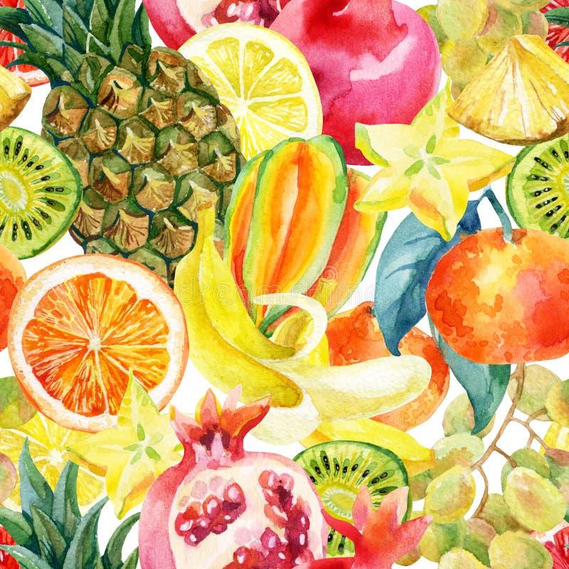Egzotycznej akwareli owocowej mieszanki bezszwowy wzór ilustracji