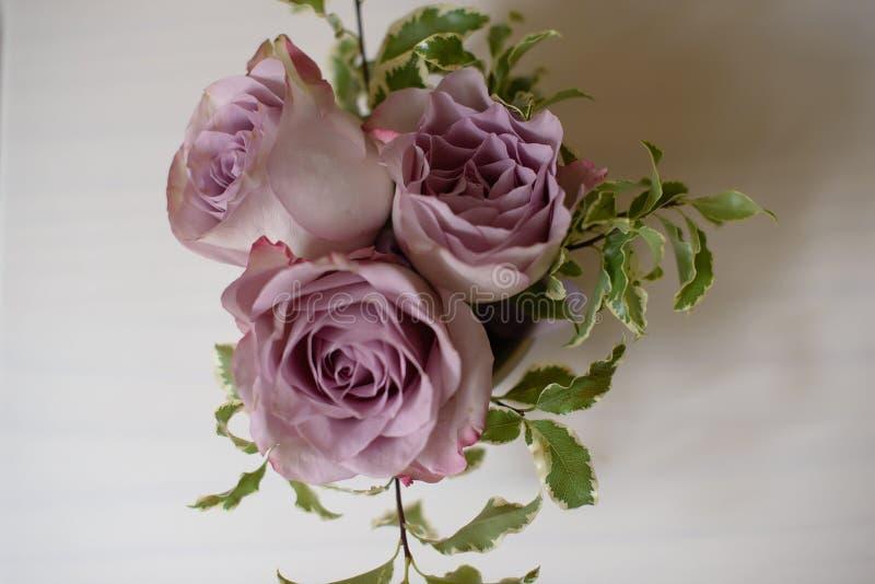 Egzotyczni ślubni kwieciści przygotowania amnezj róże w ciemniusieńkich menchiach barwią fotografia royalty free