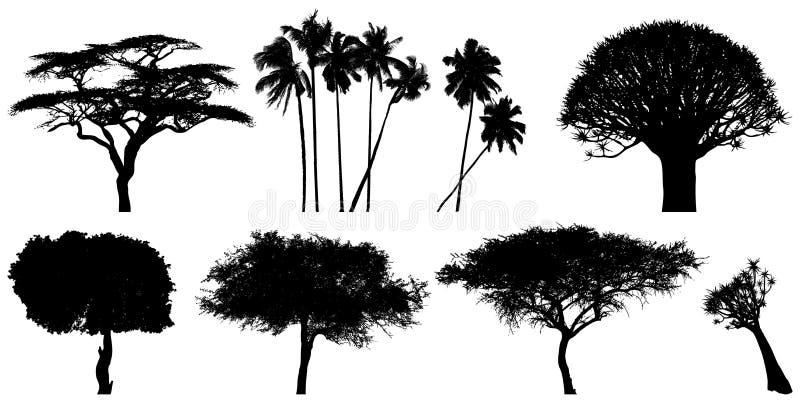 egzotyczni drzewa royalty ilustracja