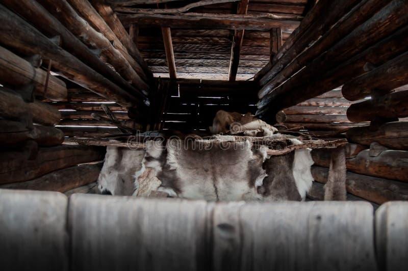 Egzotyczni północni naturalni reniferowi skór zrozumienia suszyć w wiejskim tradycyjnym drewnie notują stajnię obrazy royalty free