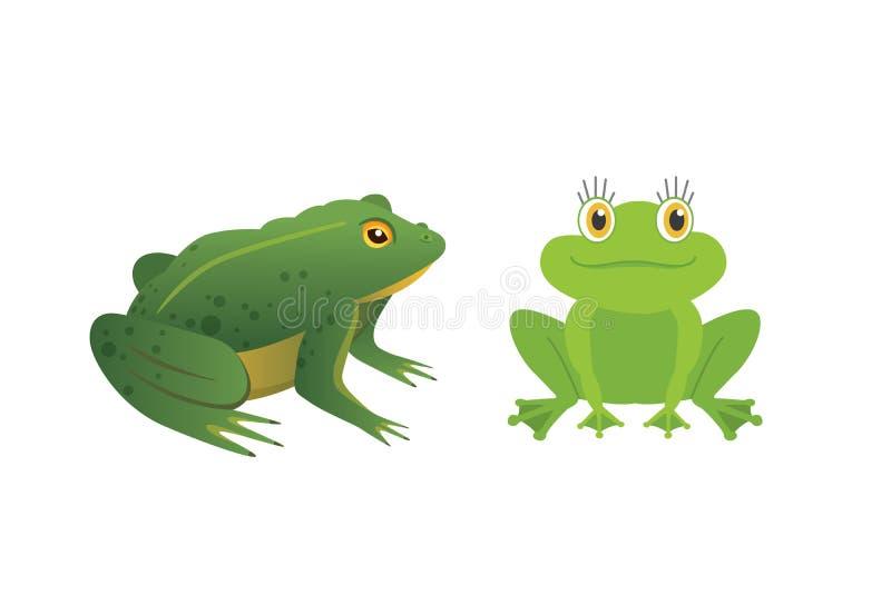 Egzotyczny amfibia set Żaby w różnej styl kreskówki Wektorowej ilustraci odizolowywającej Tropikalni zwierzęta ilustracja wektor