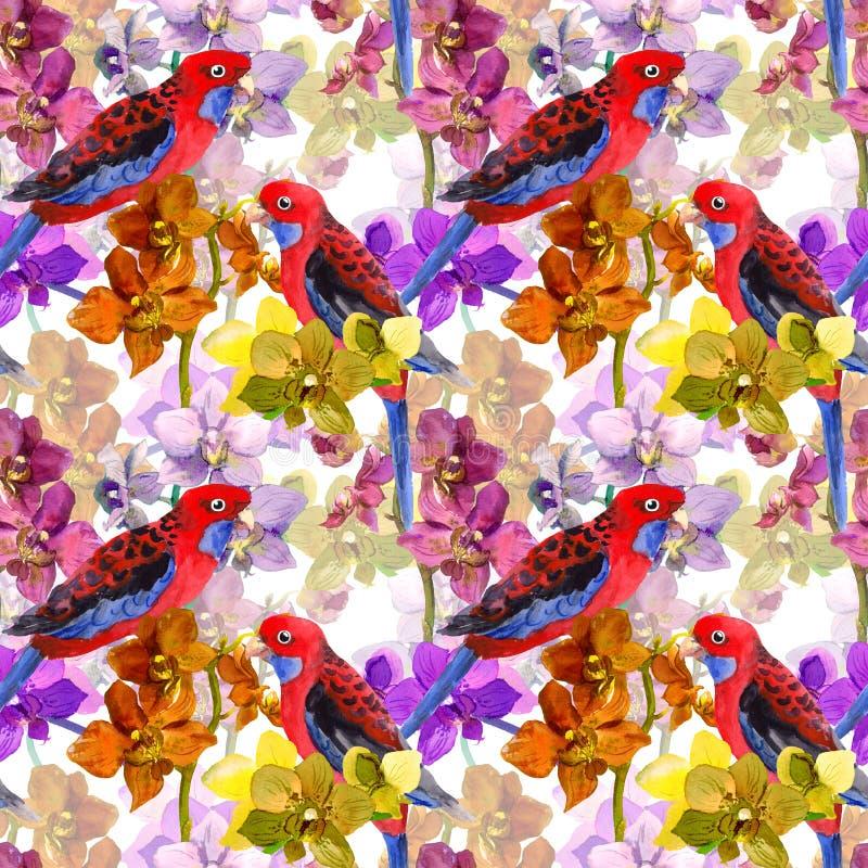Egzotyczny kwiecisty wzór - papuzi ptak, kwitnąca orchidea kwitnie royalty ilustracja