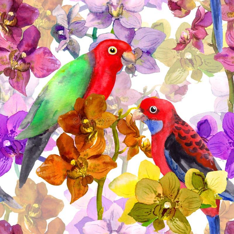 Egzotyczny kwiecisty wzór - papuzi ptak, kwitnąca orchidea kwitnie ilustracji