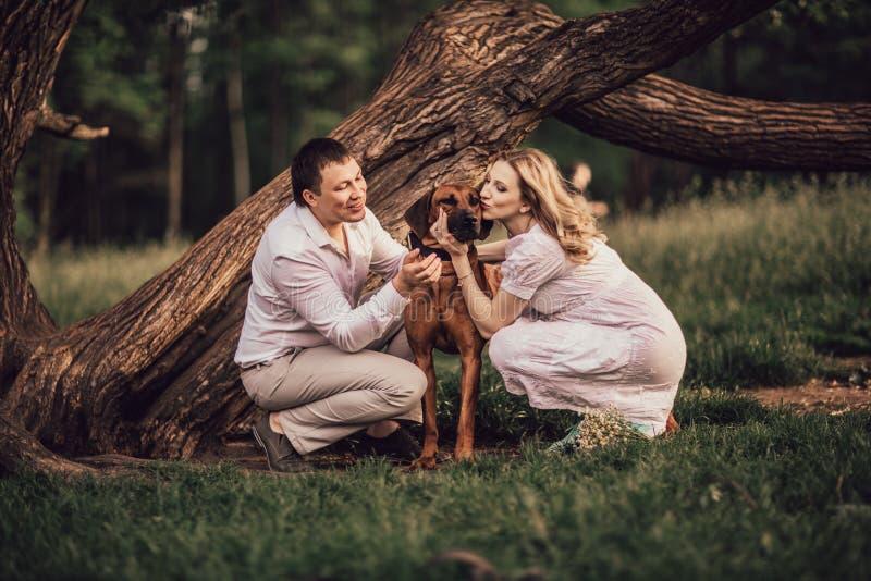 Ehemann und Frau, die ihr geliebtes Haustier beim Gehen küssen lizenzfreie stockbilder
