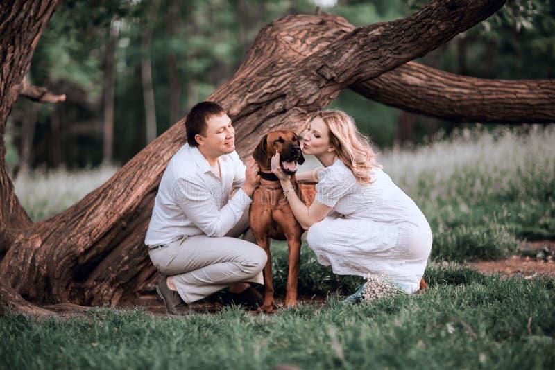Ehemann und Frau, die ihr geliebtes Haustier beim Gehen k?ssen stockbilder