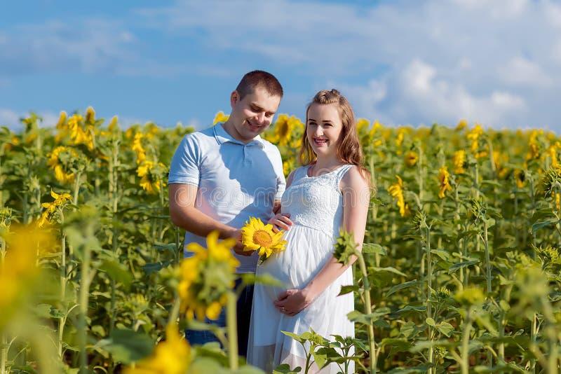 Ehemann und seine schwangere Frau gehen bei Sonnenuntergang in einem Sonnenblumenfeld auf der Außenseite lizenzfreies stockfoto