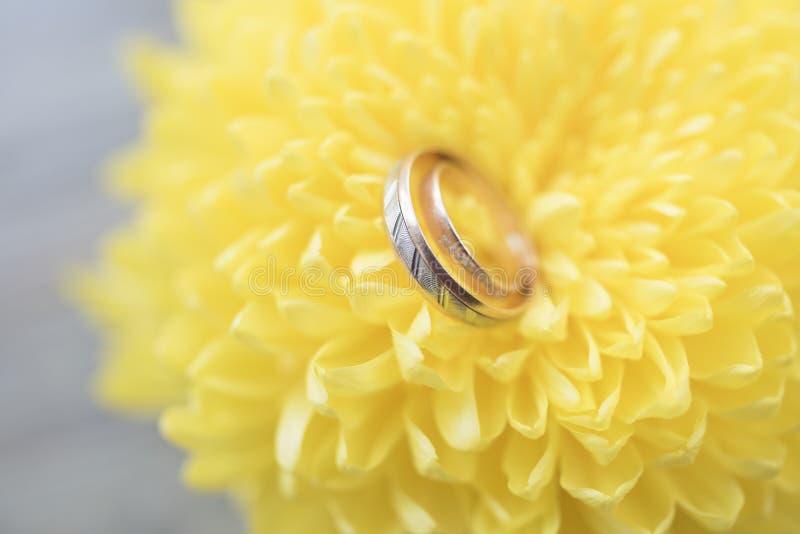 Eheringe auf einer hellen gelben Blumennahaufnahme stockfotos