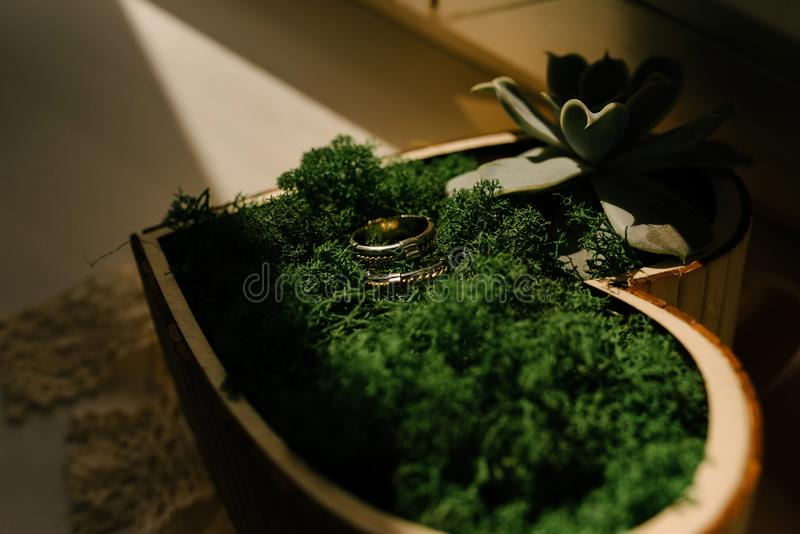 Eheringe der Braut und des Bräutigams sind in einer Holzkiste in Form eines Herzens lizenzfreies stockbild