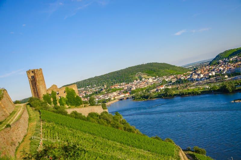 Ehrenfels城堡、城镇Ehrenfels莱茵河的在Ruedesheim附近和莱茵河畔宾根,黑森,德国 免版税库存照片