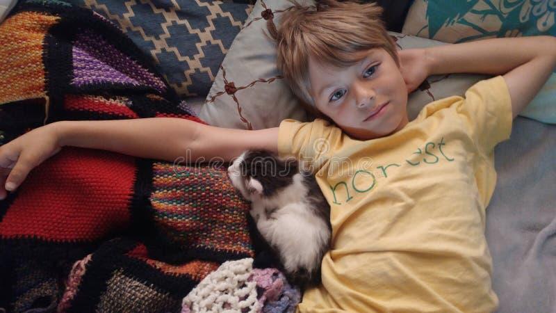 Ehrlicher Junge, der mit Kätzchen streichelt stockfotografie
