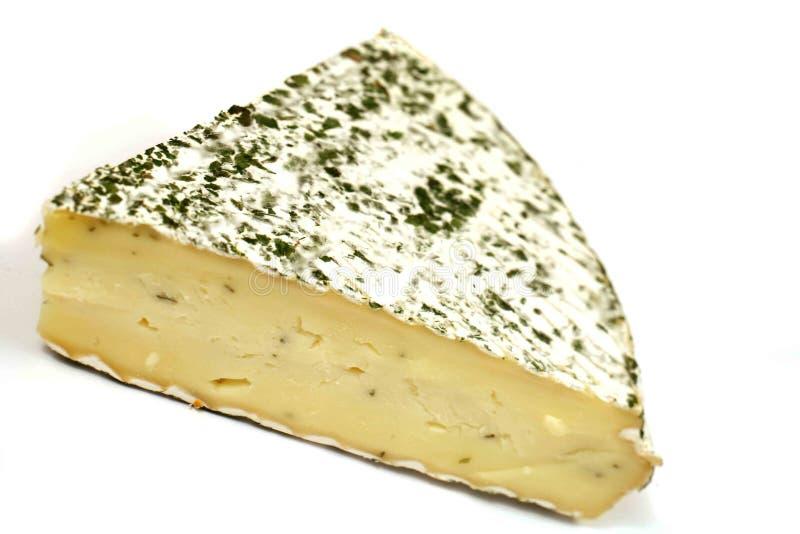 Ehrwürdiger Briekäse stockfotos