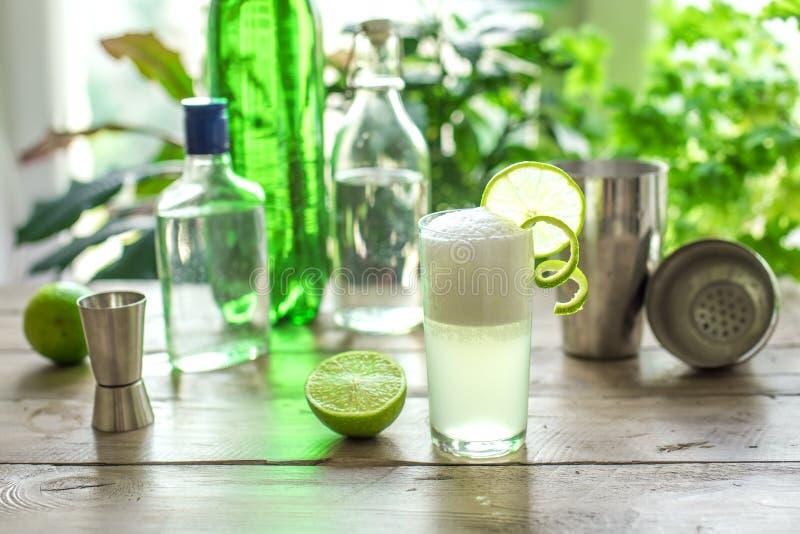Ei Gin Fizz Cocktail lizenzfreie stockfotografie