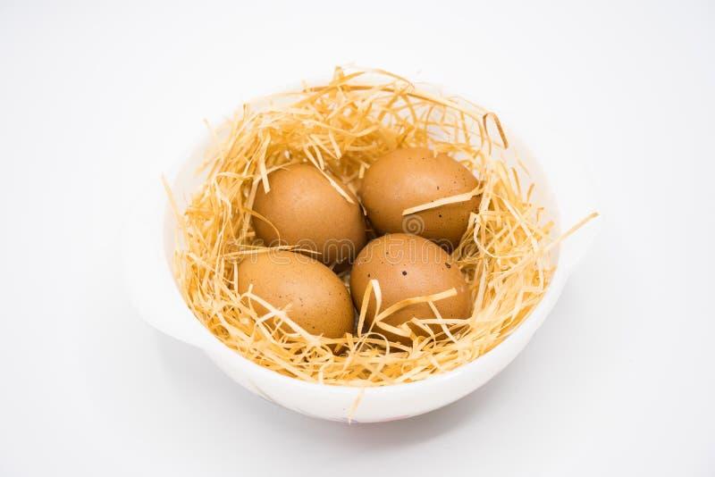 Ei op nest met witte achtergrond die in studio schieten stock foto's