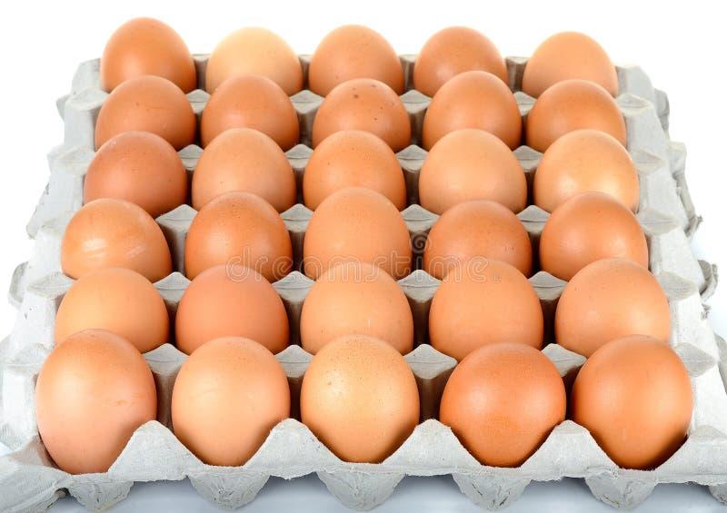 Ei in pakket op de witte achtergrond stock afbeelding