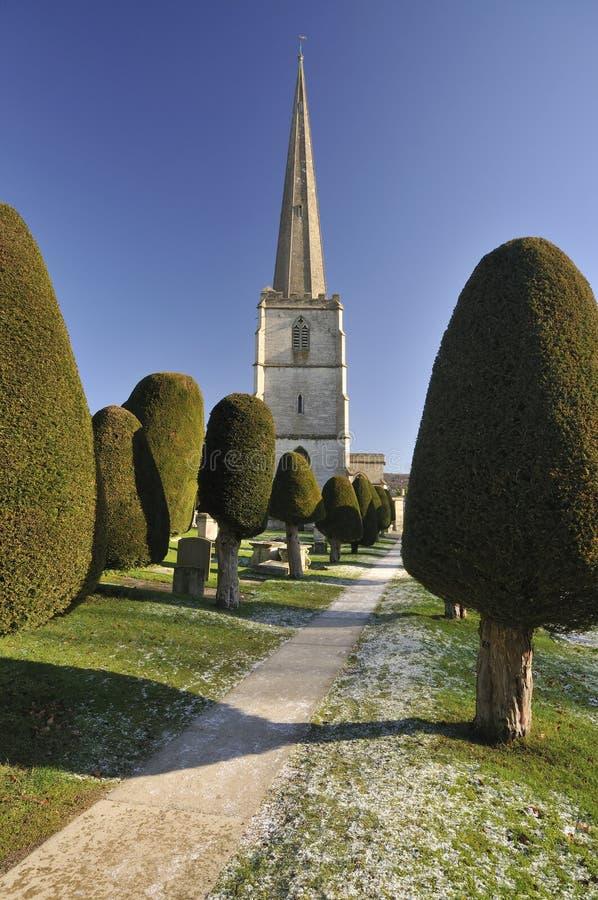 Eibe-Bäume Kirche an der Str.-Marys lizenzfreie stockfotos