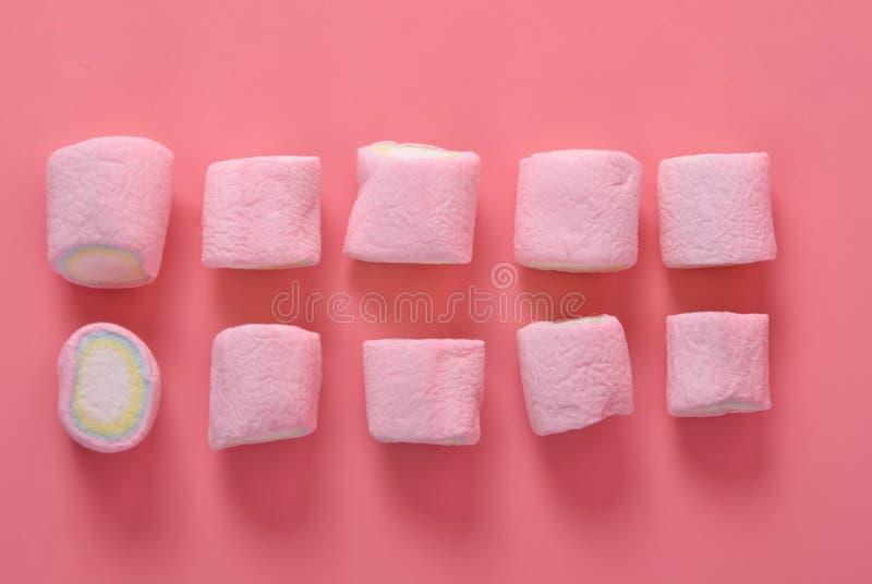Eibisch bunt auf einem rosa Hintergrund stockbilder