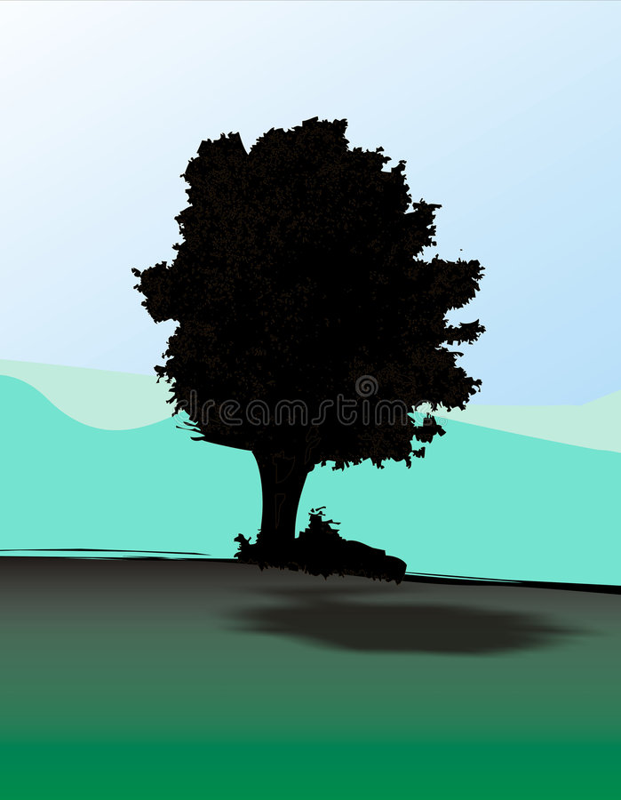 Eichenbaum stock abbildung