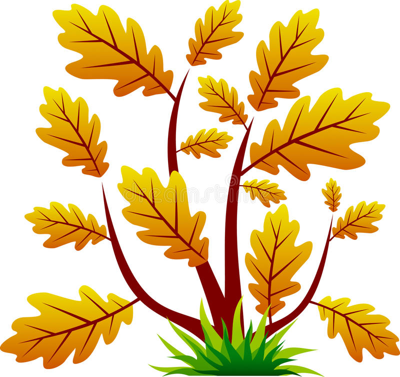 Eichenbaumikone mit Blatt lizenzfreie abbildung
