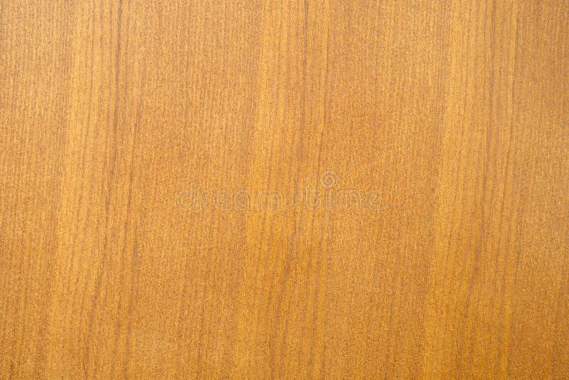 Eichenholzbeschaffenheit lizenzfreie stockbilder