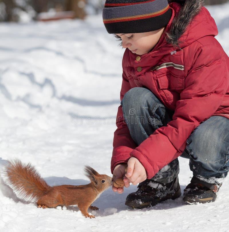 Eichhörnchen und kleiner Junge stockfotografie