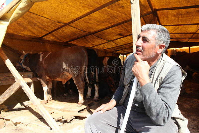 Eid al-Adha em Turquia. imagens de stock