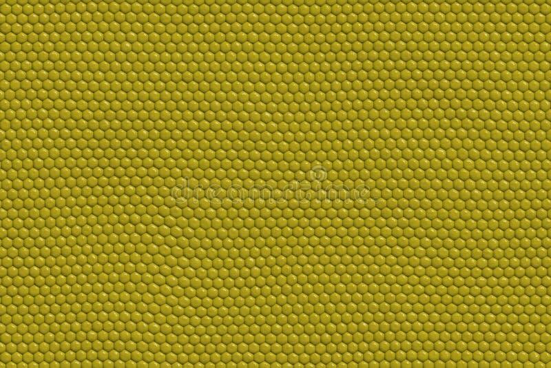 Eidechse-Haut-Auszug lizenzfreie abbildung