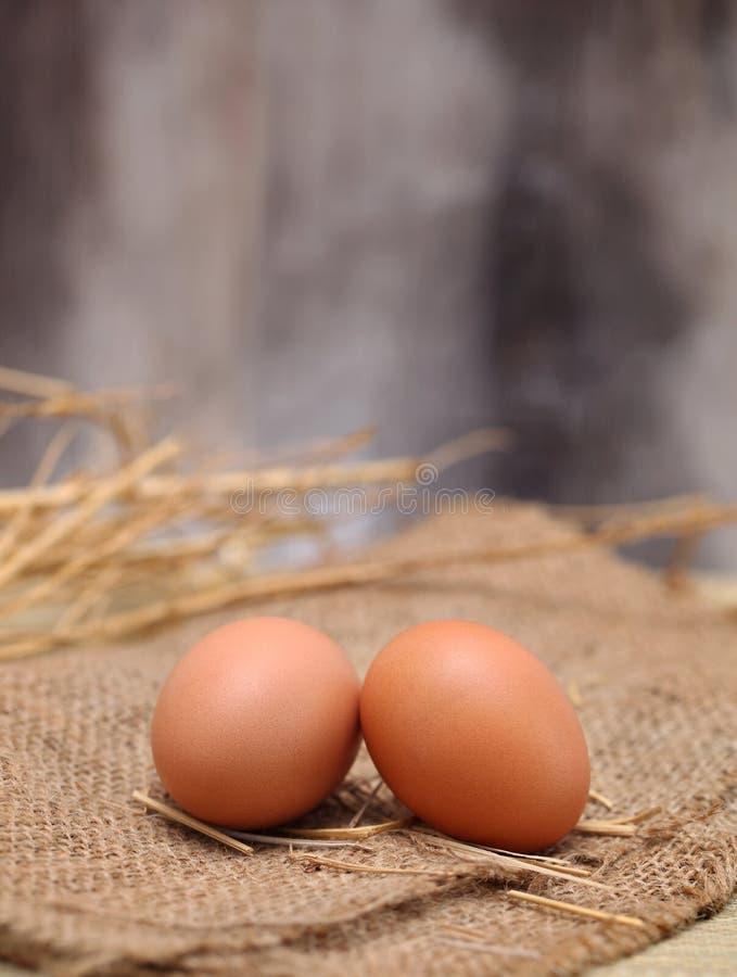 Eier stockfotos