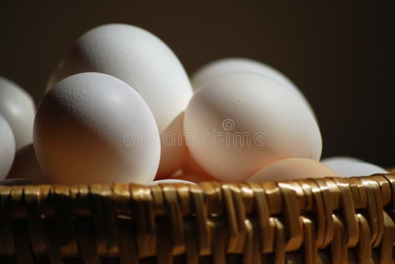 Download Eier stockbild. Bild von kochen, kohlenkübel, bestandteile - 9089523