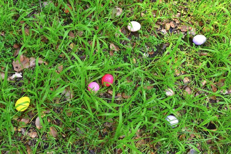 Eier auf einem Korb stockbild