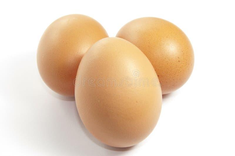 Eier auf Weiß lizenzfreies stockfoto