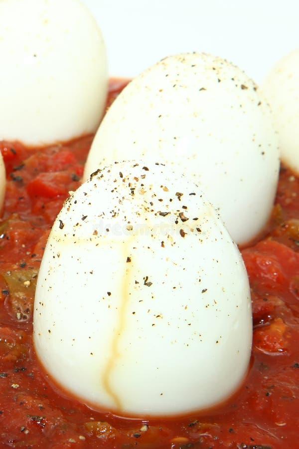 Eier in der Salsa stockbild