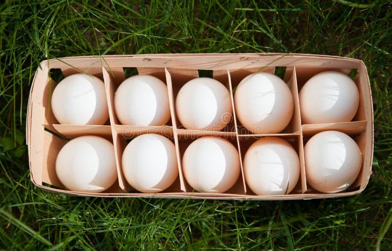 Eier in einem Weidenkorb lizenzfreies stockfoto