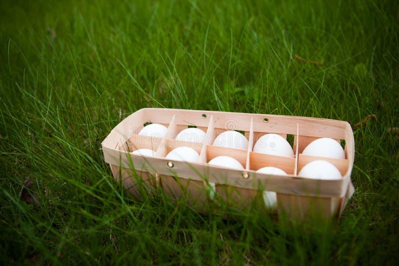 Eier in einem Weidenkorb stockfoto