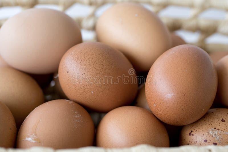 Eier in einem Weidenkorb auf einem hölzernen Brett mit unscharfem Gartenhintergrund ` stockfotos