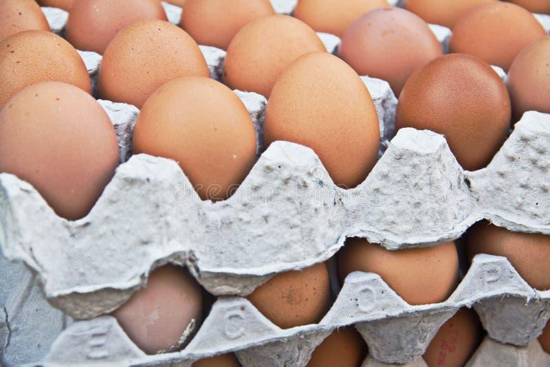 Eier im Behälter lizenzfreies stockfoto