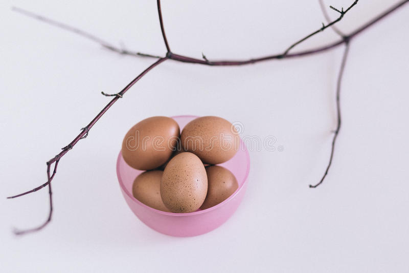 Eier im Korb stockfotografie