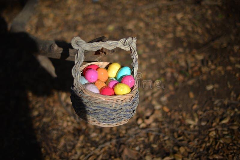 Eier im Korb lizenzfreie stockfotos