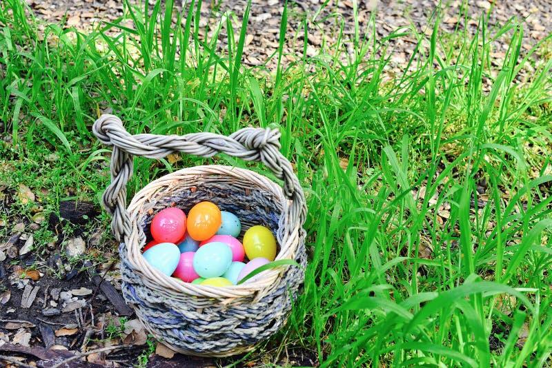 Eier im Korb stockfoto