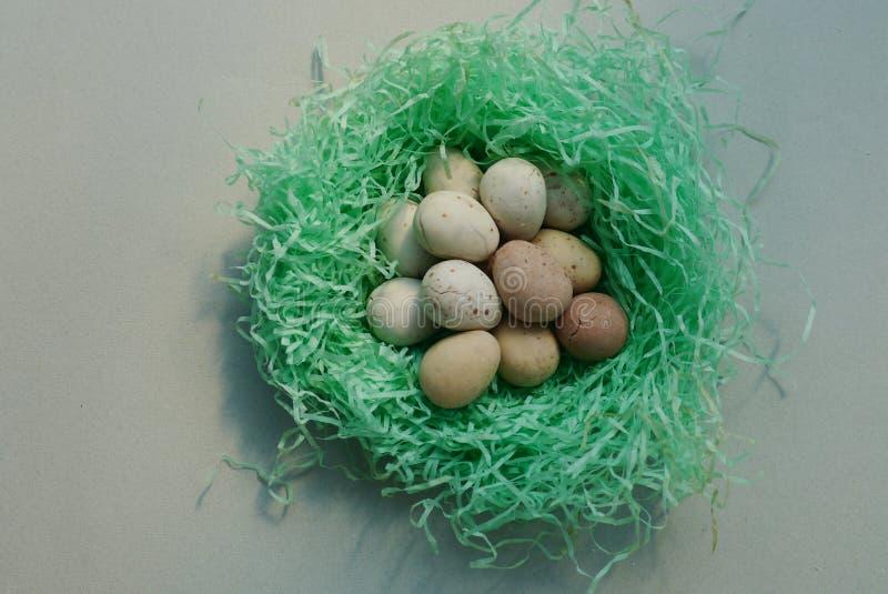 Eier im Nest lizenzfreie stockbilder