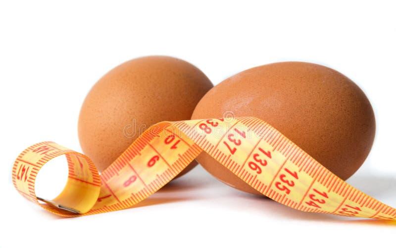 Eier mit dem Di?tmeter lizenzfreie stockbilder