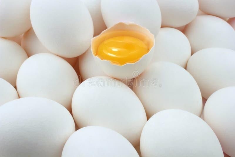 Eier und Eidotter stockbild
