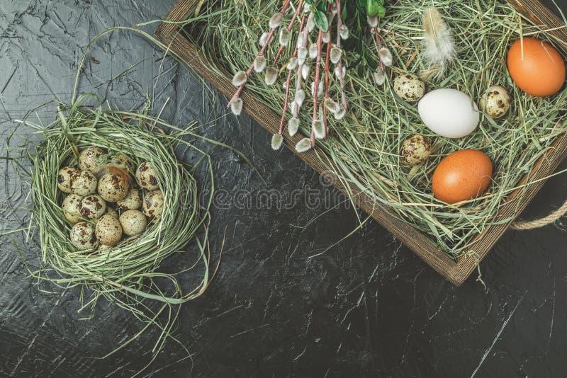 Eier und Weide und grüne Niederlassungen in der Holzkiste stockfotografie